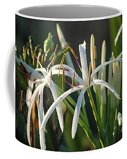 Coffee Mug featuring the photograph Early Morning Lily by LeeAnn Kendall