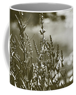 Early Morning Reflections Coffee Mug