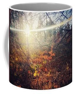 Early Morning Winter Sun Coffee Mug