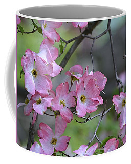 Early Spring Color Coffee Mug