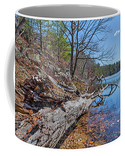 Early Spring... Coffee Mug