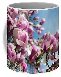 Early Spring Magnolia Coffee Mug