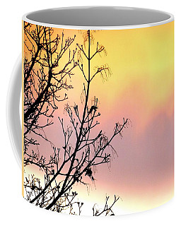 Coffee Mug featuring the photograph Early Spring Sunset by Will Borden