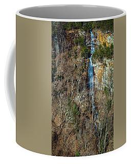 Early  Spring Waterfall  Coffee Mug