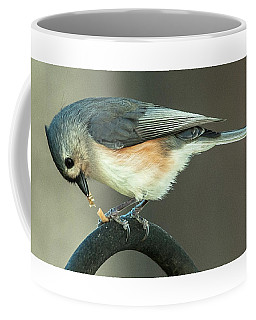 Coffee Mug featuring the photograph Early Titmouse Gets The Worm by Jim Moore