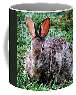 Easter Bunny Coffee Mug by John Lautermilch