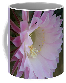 Easter Lily Cactus East Coffee Mug by Marna Edwards Flavell