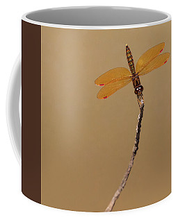 Eastern Amberwing Coffee Mug