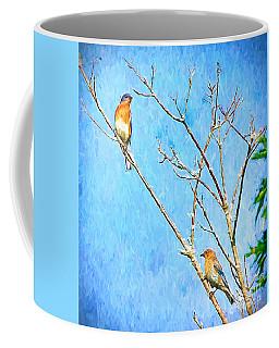 Eastern Bluebird Couple Coffee Mug