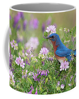 Eastern Bluebird - D010120 Coffee Mug