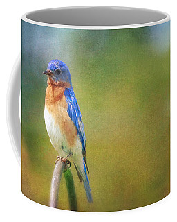 Coffee Mug featuring the photograph Eastern Bluebird Painted Effect by Heidi Hermes