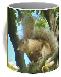 Coffee Mug featuring the photograph Eastern Gray Squirrel Branch by Rockin Docks Deluxephotos