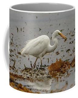 Eastern Great Egret 10 Coffee Mug