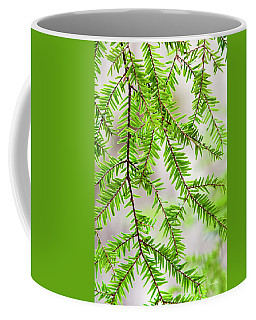 Coffee Mug featuring the photograph Eastern Hemlock Tree Abstract by Christina Rollo