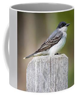 Eastern Kingbird 2018 Coffee Mug
