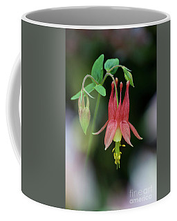 Eastern Red Columbine - D010104 Coffee Mug