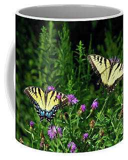 Coffee Mug featuring the photograph Eastern Tiger Swallowtail Butterfly - Female And Male  by Kerri Farley