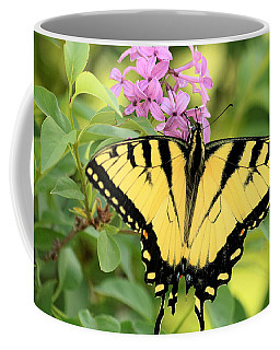 Eastern Tiger Swallowtail Butterfly Coffee Mug by Sheila Brown