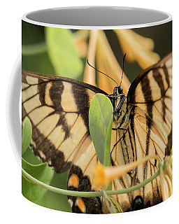 Eastern Tiger Swallowtail In The Honeysuckle Coffee Mug