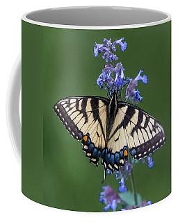 Eastern Tiger Swallowtail Wingspan Coffee Mug