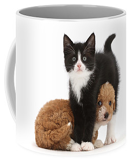Easy To See Which One Of Us Is The Boss Coffee Mug