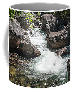 Easy Waters- Coffee Mug