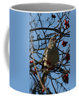 Coffee Mug featuring the photograph Eating Berries by Cathy Harper