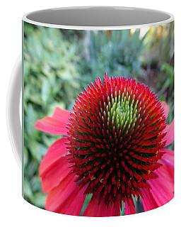 Echinacea Cone Up Close Coffee Mug