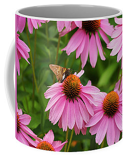Echinacea In Bloom Coffee Mug