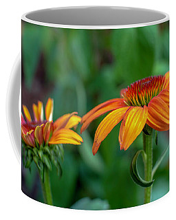 Echinacea Side View Coffee Mug