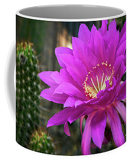 Coffee Mug featuring the photograph Echinopsis In Hot Pink  by Saija Lehtonen