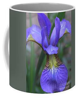 Ec Iris Coffee Mug