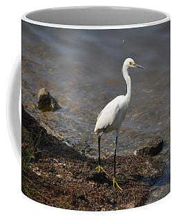 Egret 1 Coffee Mug by Gordon Mooneyhan