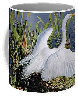 Egret Display Coffee Mug