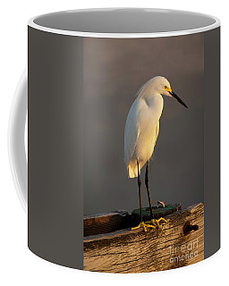 Egret Glow Coffee Mug