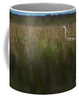 Egret In Swamp-1-0711 Coffee Mug