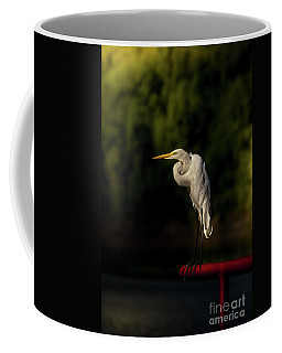 Coffee Mug featuring the photograph Egret On Deck Rail by Robert Frederick
