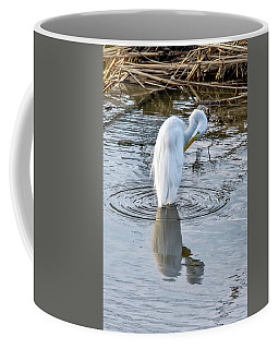 Egret Standing In A Stream Preening Coffee Mug