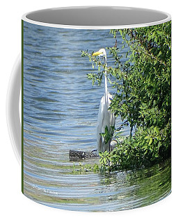 Great Egret In The Marsh Coffee Mug
