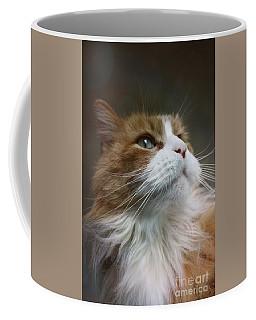 Einstein The Cat Coffee Mug by Mary-Lee Sanders