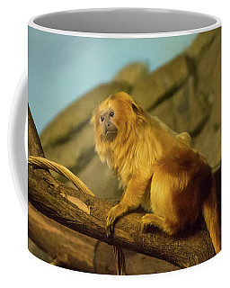 El Paso Zoo - Golden Lion Tamarin Coffee Mug