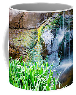 El Paso Zoo Waterfall Long Exposure Coffee Mug