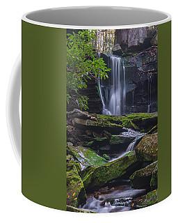 Elakala Falls Coffee Mug