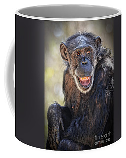Elderly Chimp Enjoying The Warm Summer Afternoon Coffee Mug
