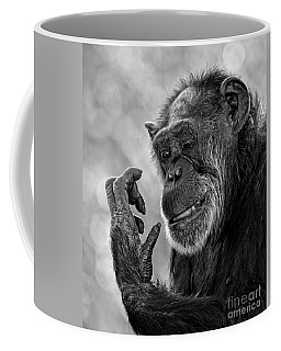 Elderly Chimp Studying Her Hand Coffee Mug