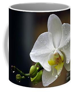 Elegance In White Coffee Mug
