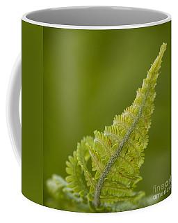 Elegant Fern. Coffee Mug