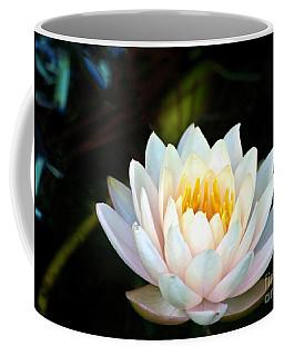 Elegant White Water Lily Coffee Mug