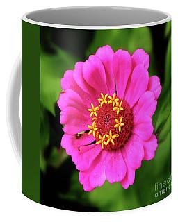 Elegant Zinnia Flower Pink Tones Coffee Mug