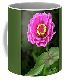 Elegant Zinnia Soft Glow Coffee Mug